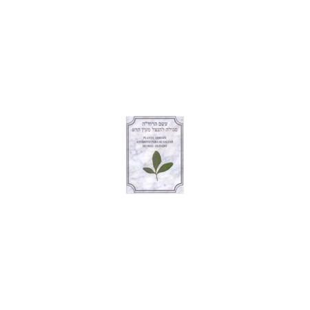 Bênção plastificada folha de arruda