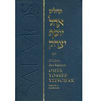 Tehilim-Salmos - Com Tradução, Transliteração e Comentários